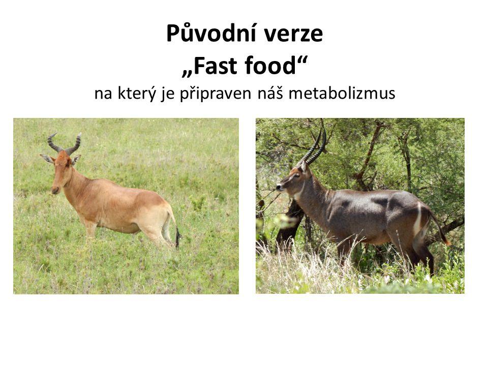 """Původní verze """"Fast food na který je připraven náš metabolizmus"""
