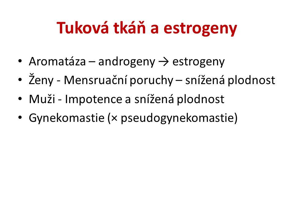 Tuková tkáň a estrogeny