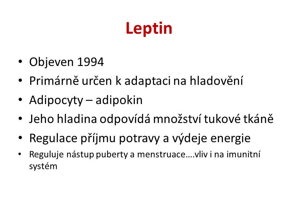 Leptin Objeven 1994 Primárně určen k adaptaci na hladovění