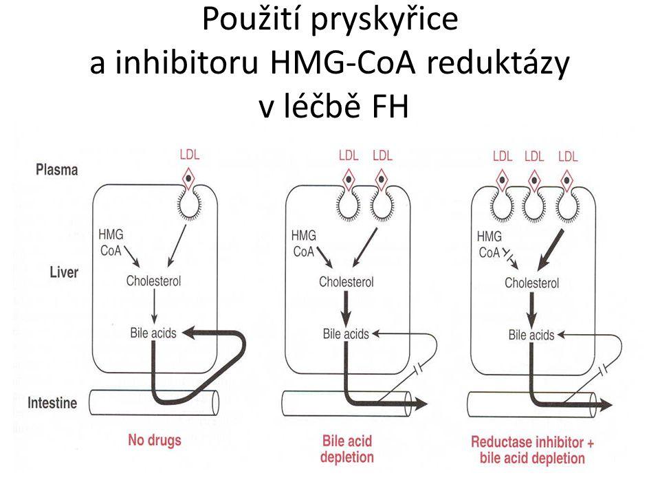 Použití pryskyřice a inhibitoru HMG-CoA reduktázy v léčbě FH
