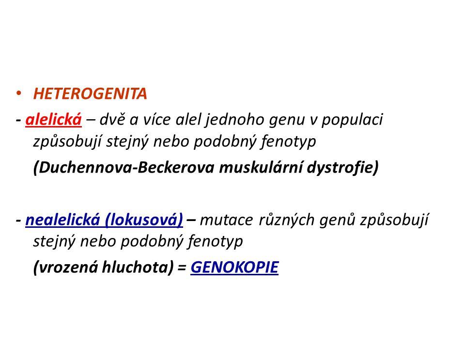 HETEROGENITA - alelická – dvě a více alel jednoho genu v populaci způsobují stejný nebo podobný fenotyp.