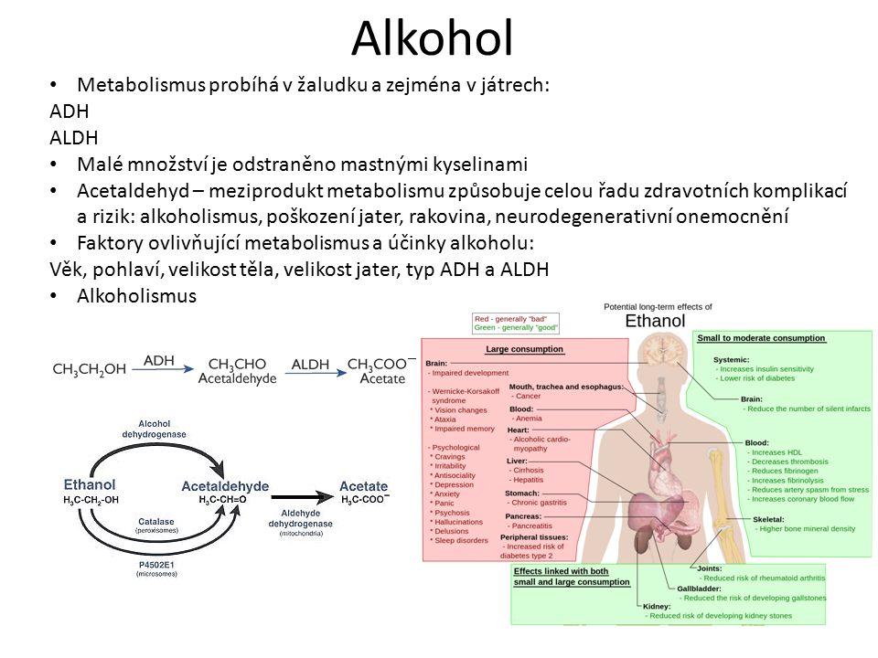 Alkohol Metabolismus probíhá v žaludku a zejména v játrech: ADH ALDH