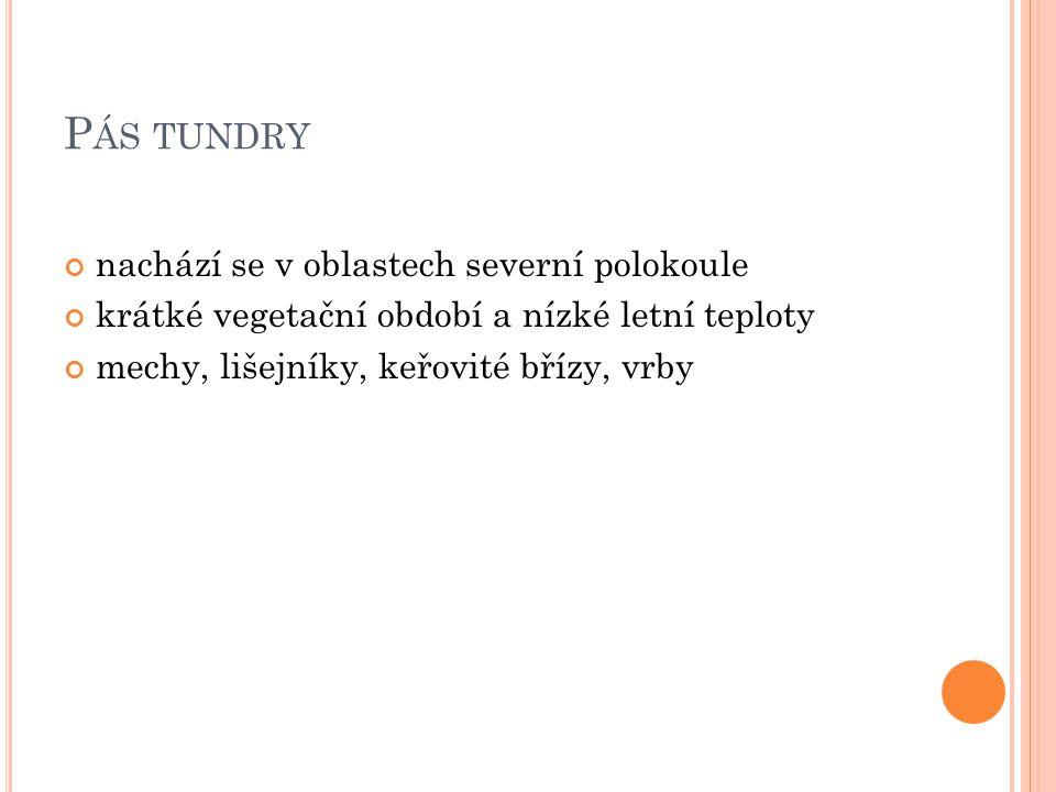Pás tundry nachází se v oblastech severní polokoule