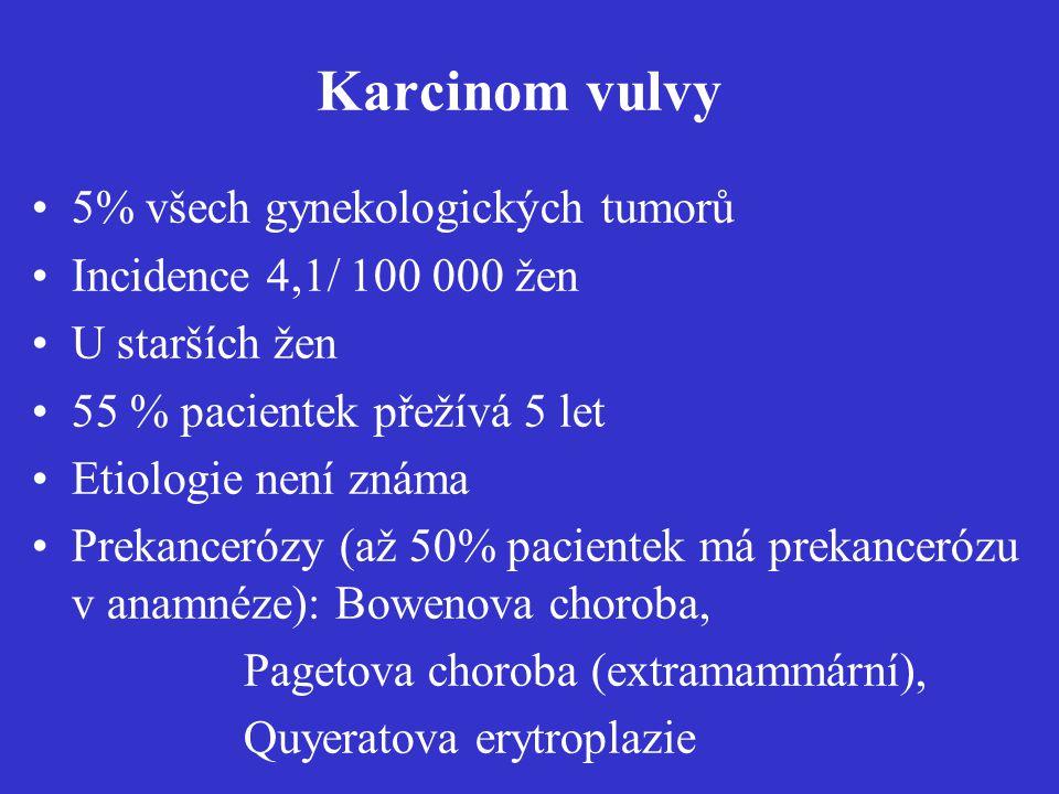 Karcinom vulvy 5% všech gynekologických tumorů