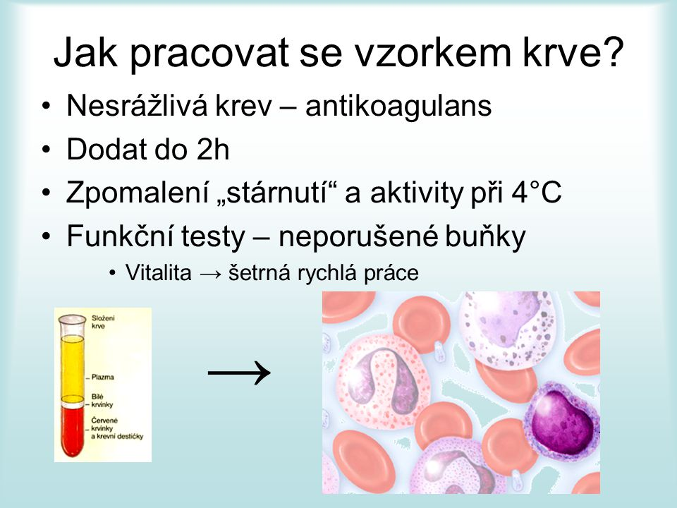 Jak pracovat se vzorkem krve