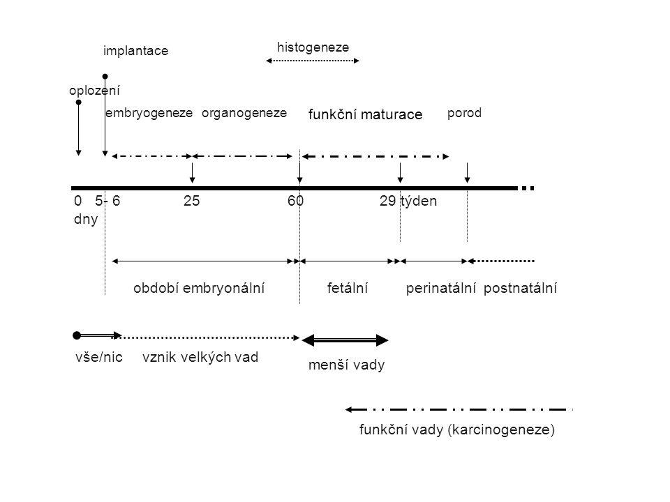 histogeneze implantace. oplození. funkční maturace. embryogeneze organogeneze porod.