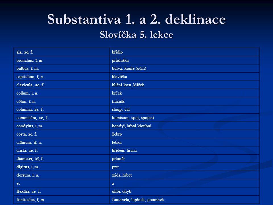 Substantiva 1. a 2. deklinace Slovíčka 5. lekce