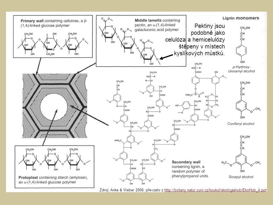 celulóza a hemicelulózy štěpeny v místech kyslíkových můstků.
