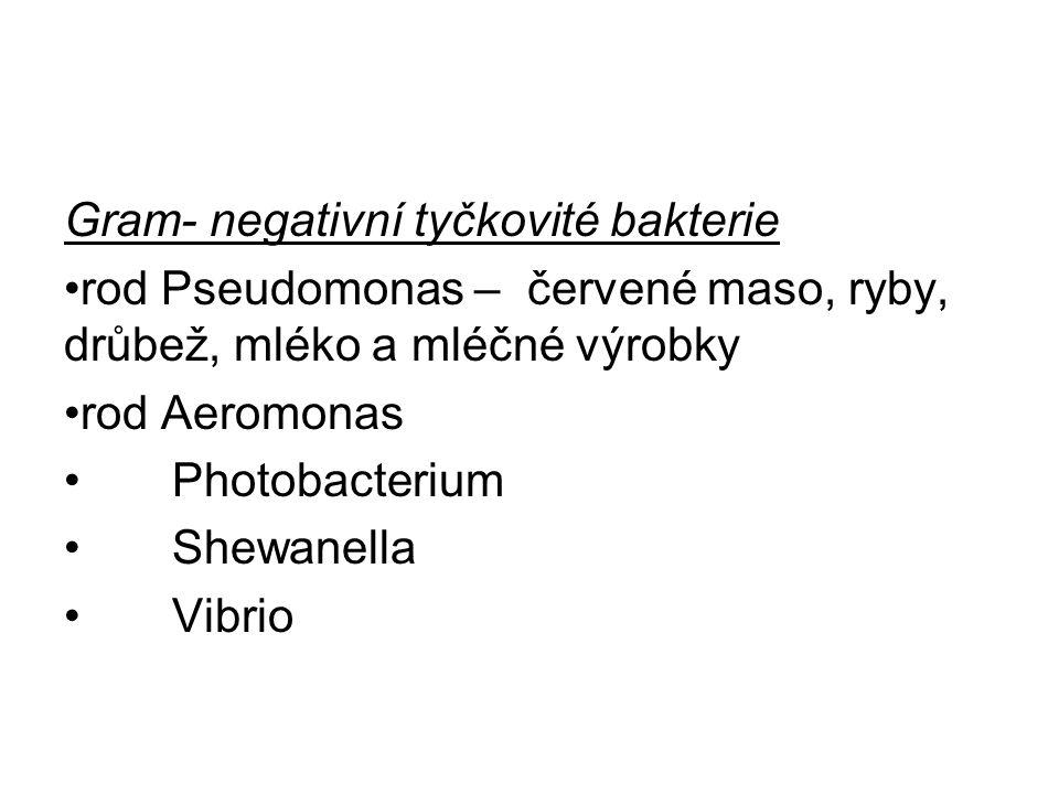 Gram- negativní tyčkovité bakterie