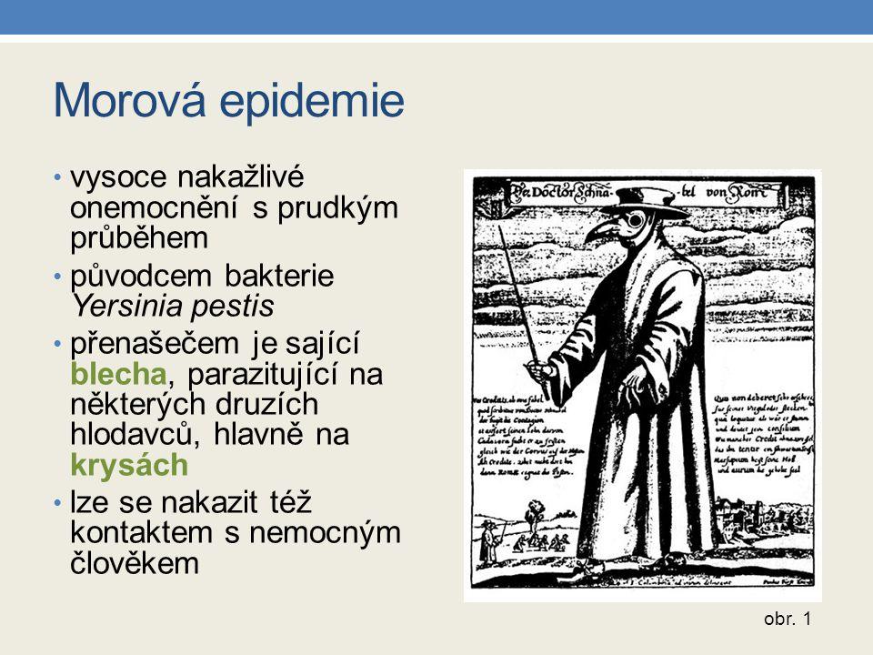 Morová epidemie vysoce nakažlivé onemocnění s prudkým průběhem