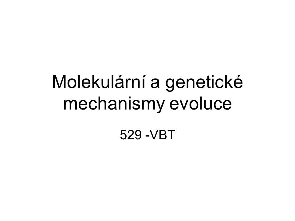 Molekulární a genetické mechanismy evoluce