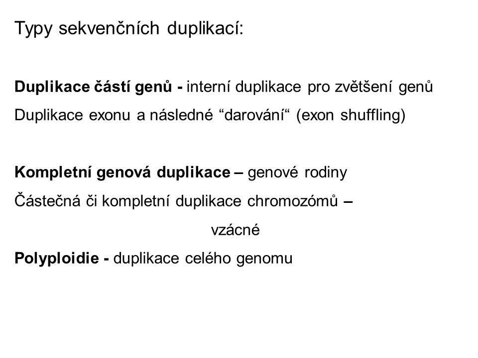 Typy sekvenčních duplikací: