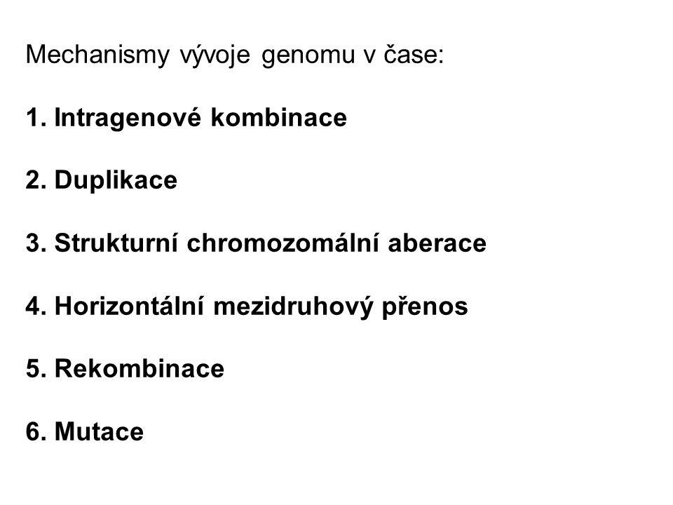 Mechanismy vývoje genomu v čase: