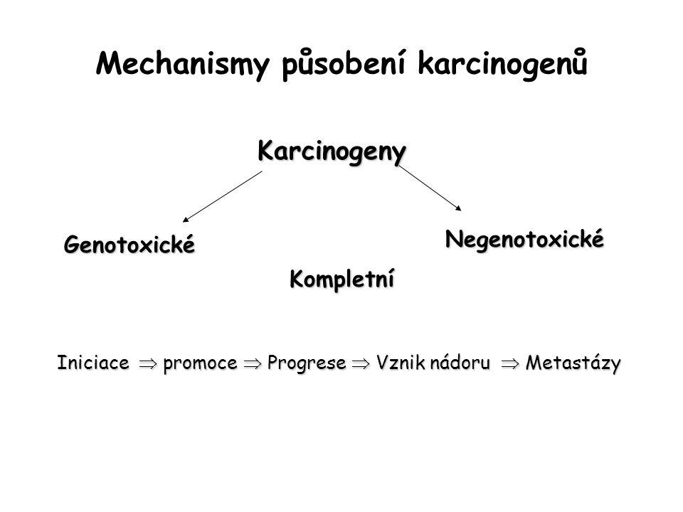Mechanismy působení karcinogenů