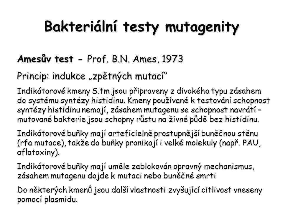 Bakteriální testy mutagenity