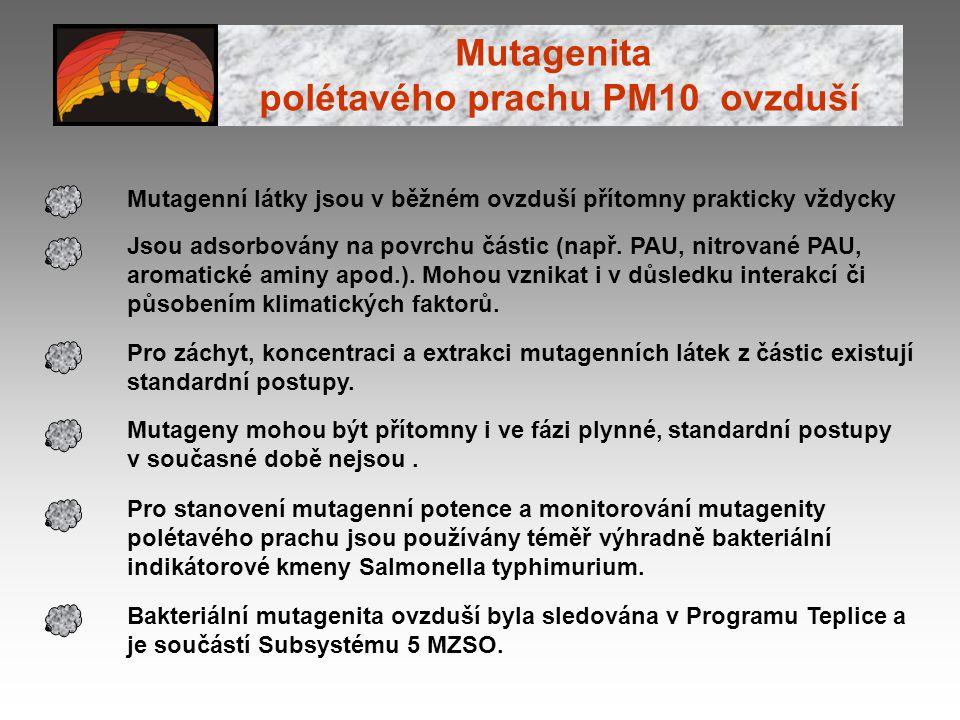 Mutagenita polétavého prachu PM10 ovzduší