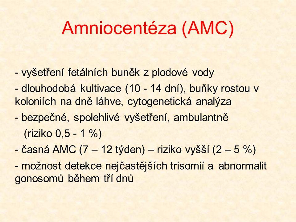 Amniocentéza (AMC) - vyšetření fetálních buněk z plodové vody