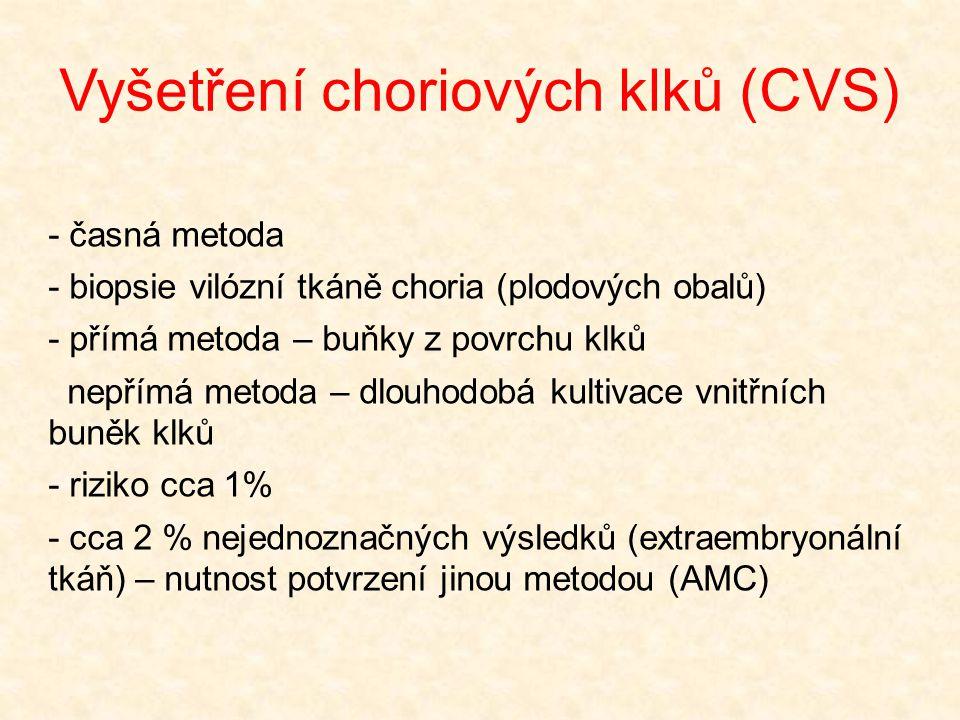 Vyšetření choriových klků (CVS)