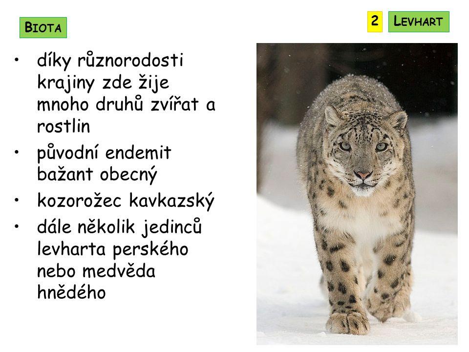 díky různorodosti krajiny zde žije mnoho druhů zvířat a rostlin