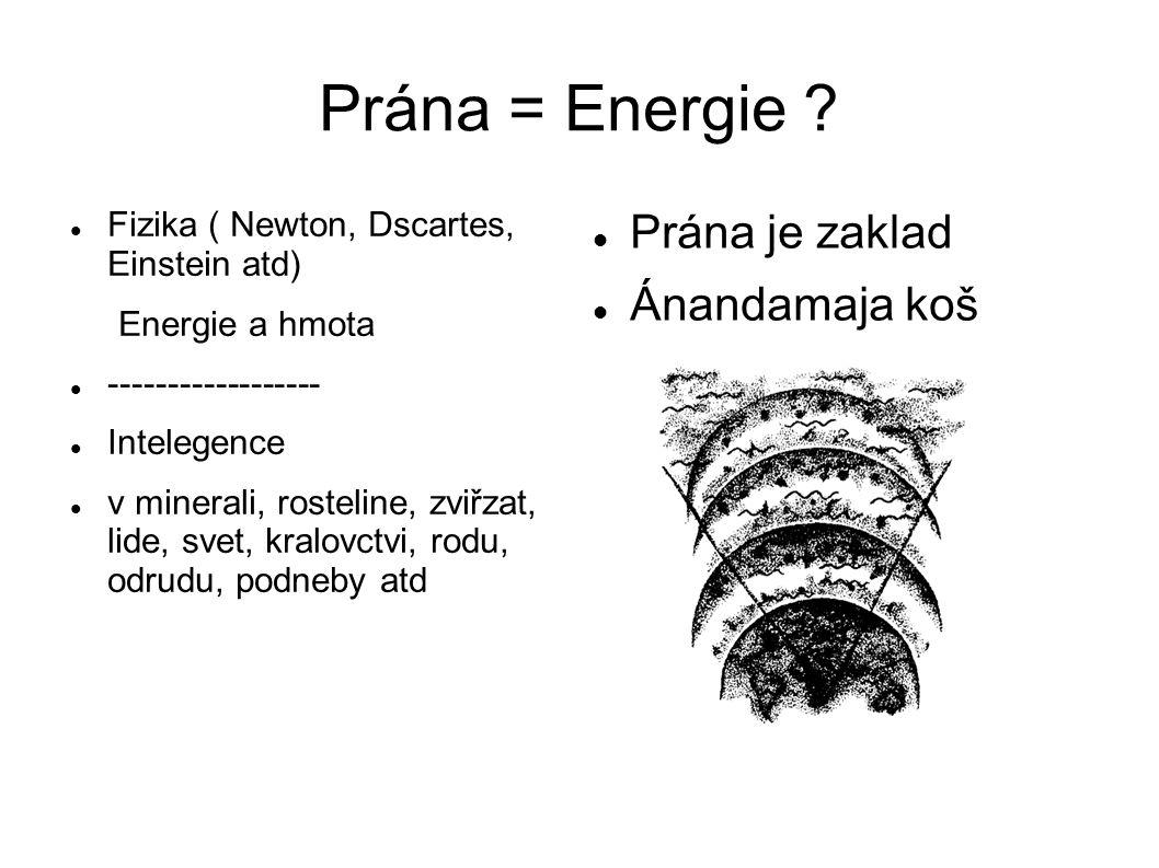 Prána = Energie Prána je zaklad Ánandamaja koš