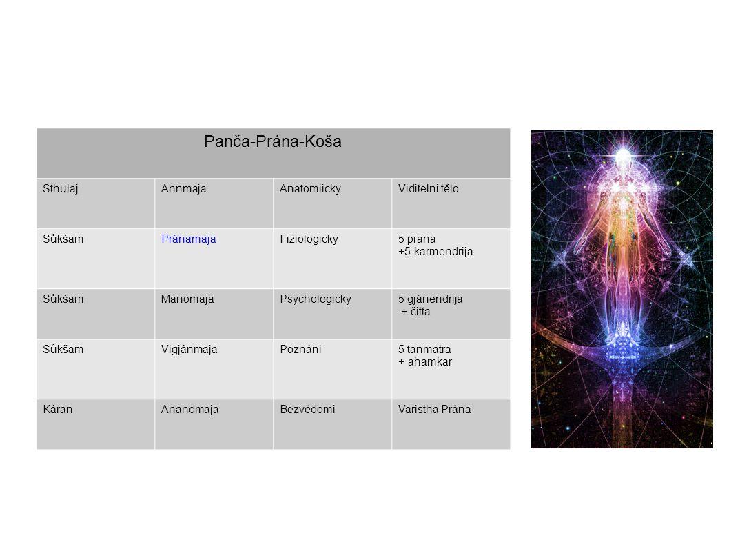 Panča-Prána-Koša Sthulaj Annmaja Anatomiicky Viditelni tělo Sůkšam