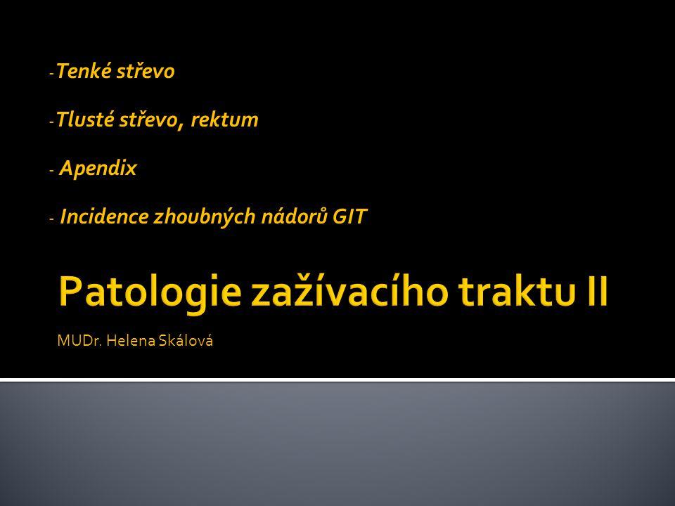 Patologie zažívacího traktu II