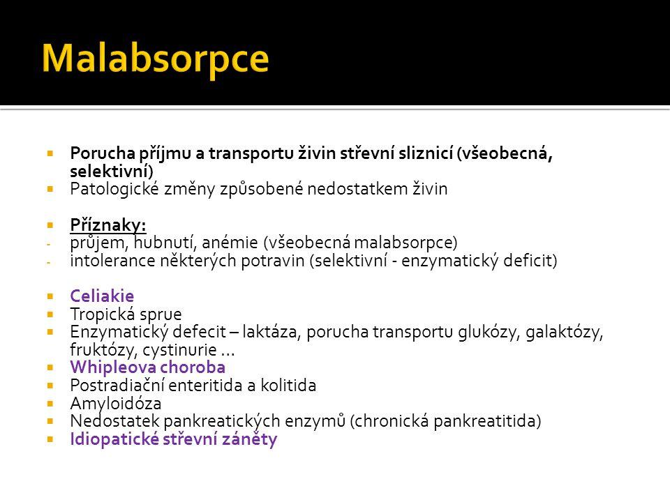 Malabsorpce Porucha příjmu a transportu živin střevní sliznicí (všeobecná, selektivní) Patologické změny způsobené nedostatkem živin.