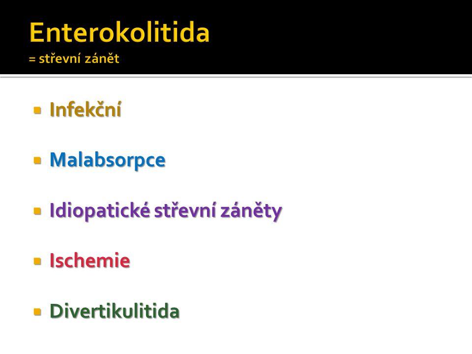 Enterokolitida = střevní zánět
