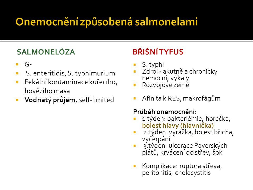 Onemocnění způsobená salmonelami