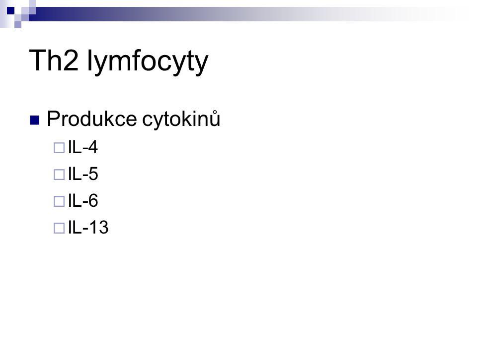 Th2 lymfocyty Produkce cytokinů IL-4 IL-5 IL-6 IL-13