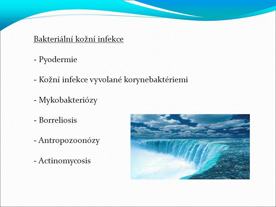 Bakteriální kožní infekce