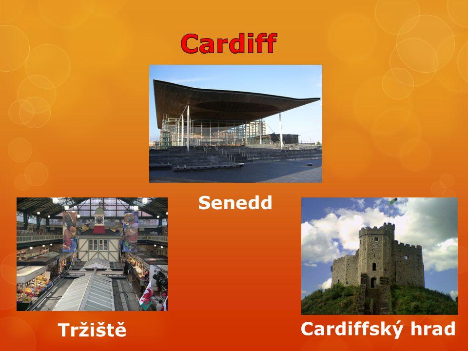 Cardiff Senedd Tržiště Cardiffský hrad