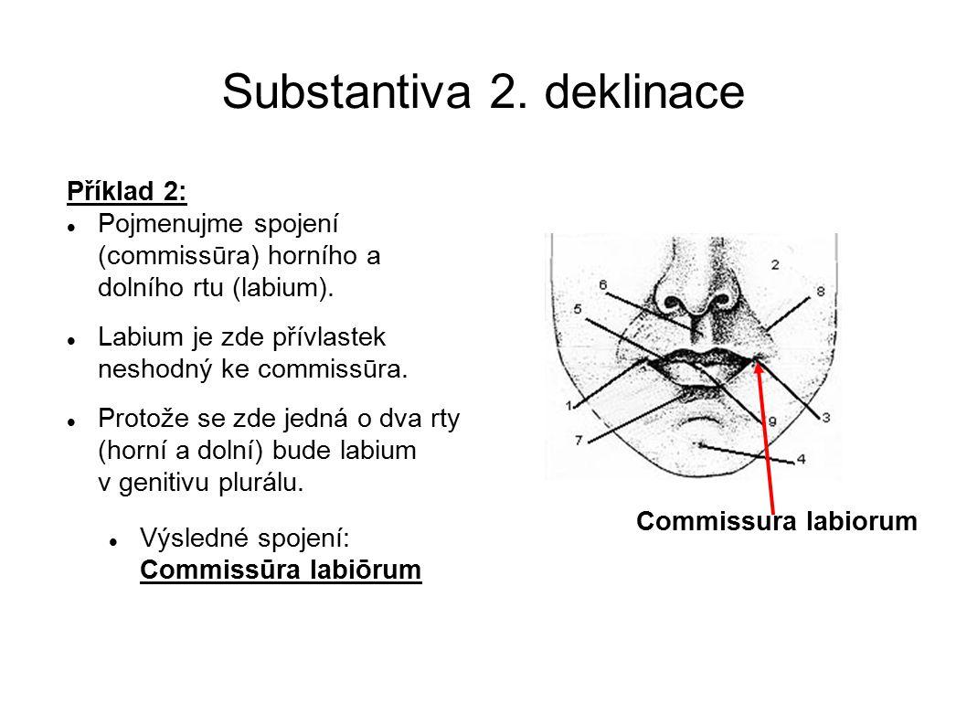Substantiva 2. deklinace
