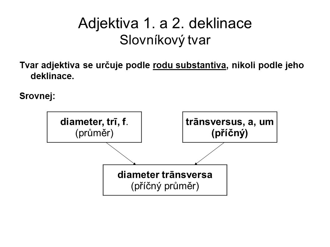 Adjektiva 1. a 2. deklinace Slovníkový tvar