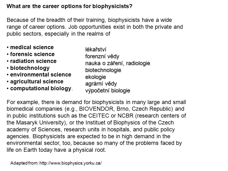 What are the career options for biophysicists