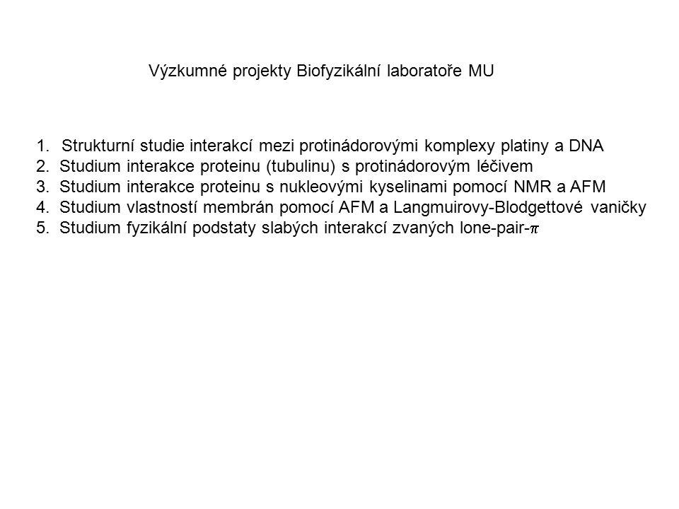 Výzkumné projekty Biofyzikální laboratoře MU