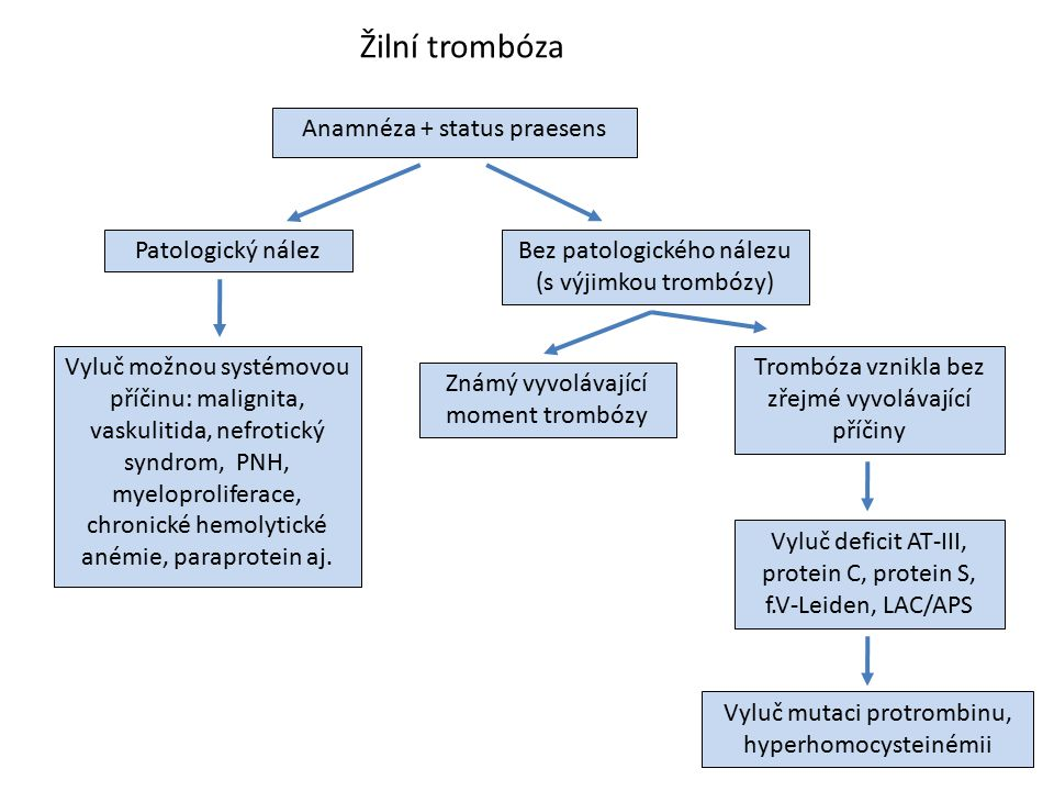 Žilní trombóza Anamnéza + status praesens Patologický nález