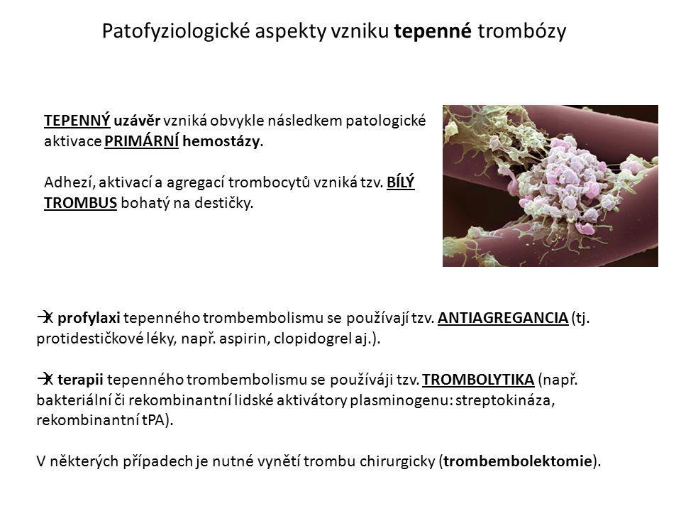 Patofyziologické aspekty vzniku tepenné trombózy