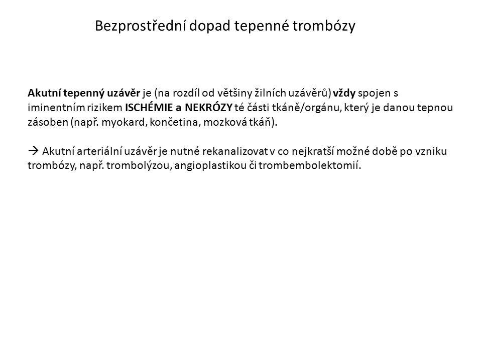 Bezprostřední dopad tepenné trombózy