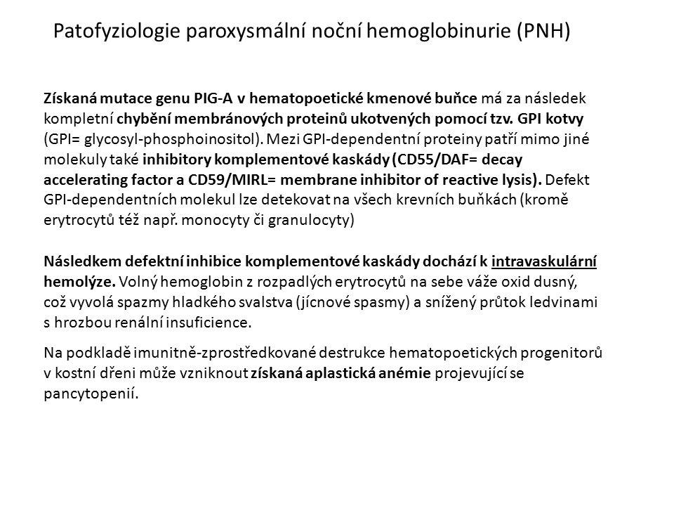 Patofyziologie paroxysmální noční hemoglobinurie (PNH)