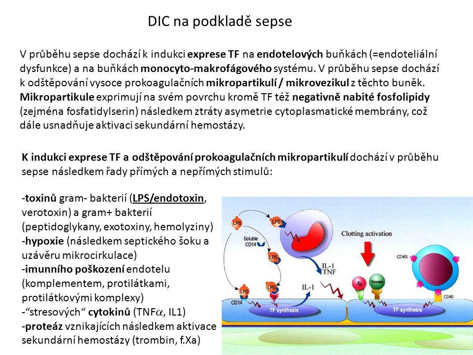 DIC na podkladě sepse