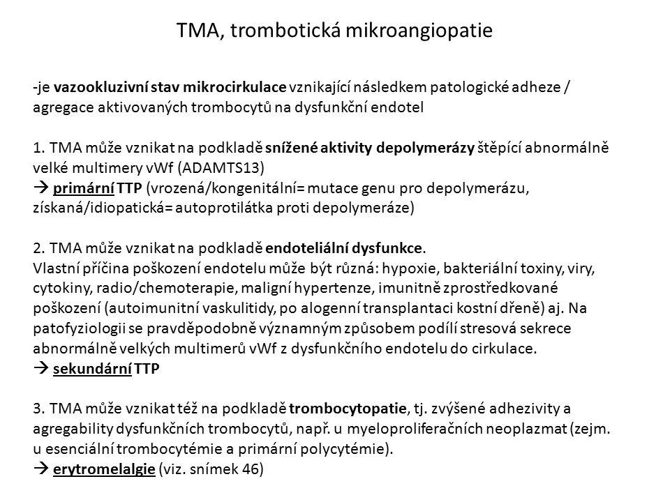 TMA, trombotická mikroangiopatie