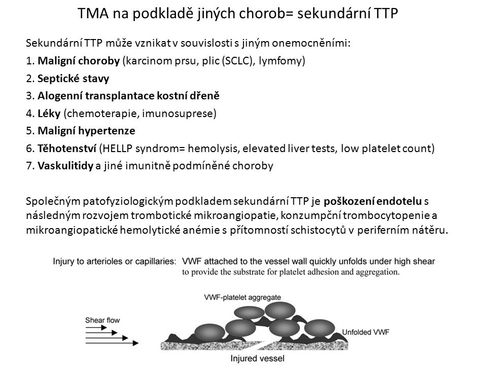 TMA na podkladě jiných chorob= sekundární TTP
