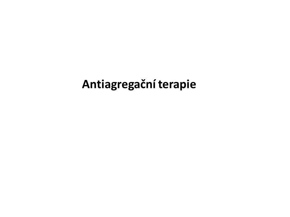 Antiagregační terapie