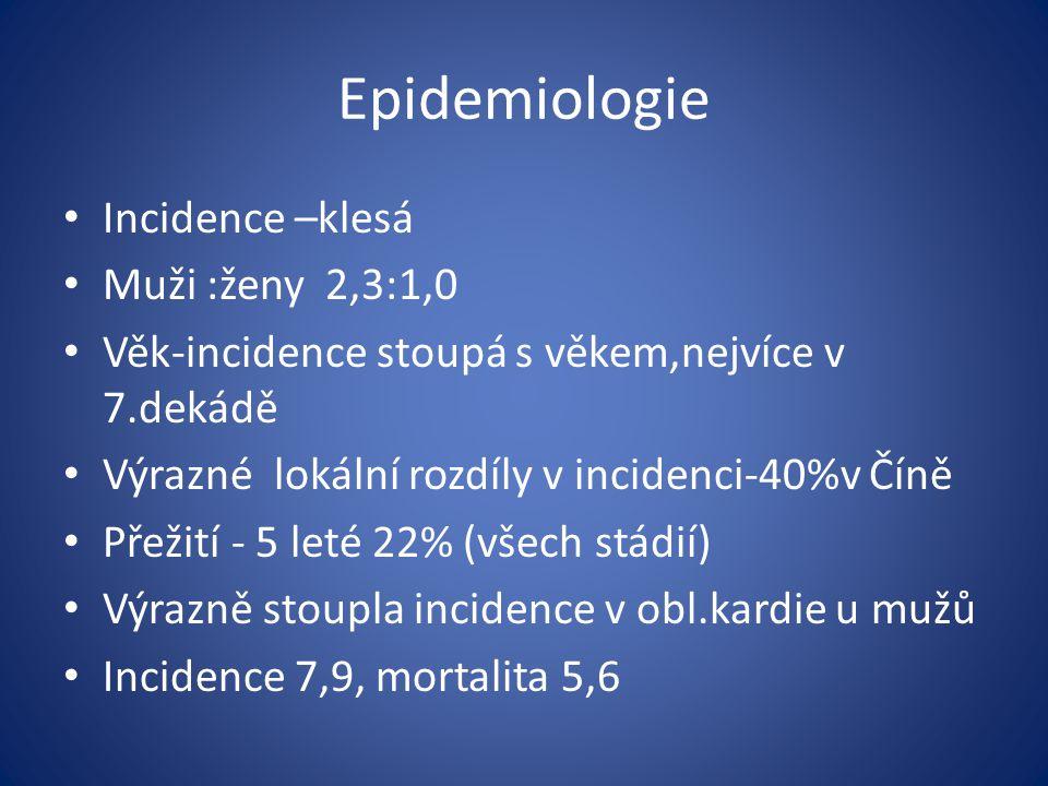 Epidemiologie Incidence –klesá Muži :ženy 2,3:1,0