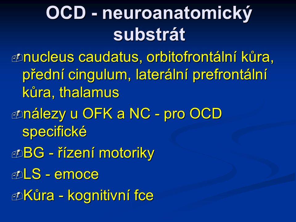 OCD - neuroanatomický substrát