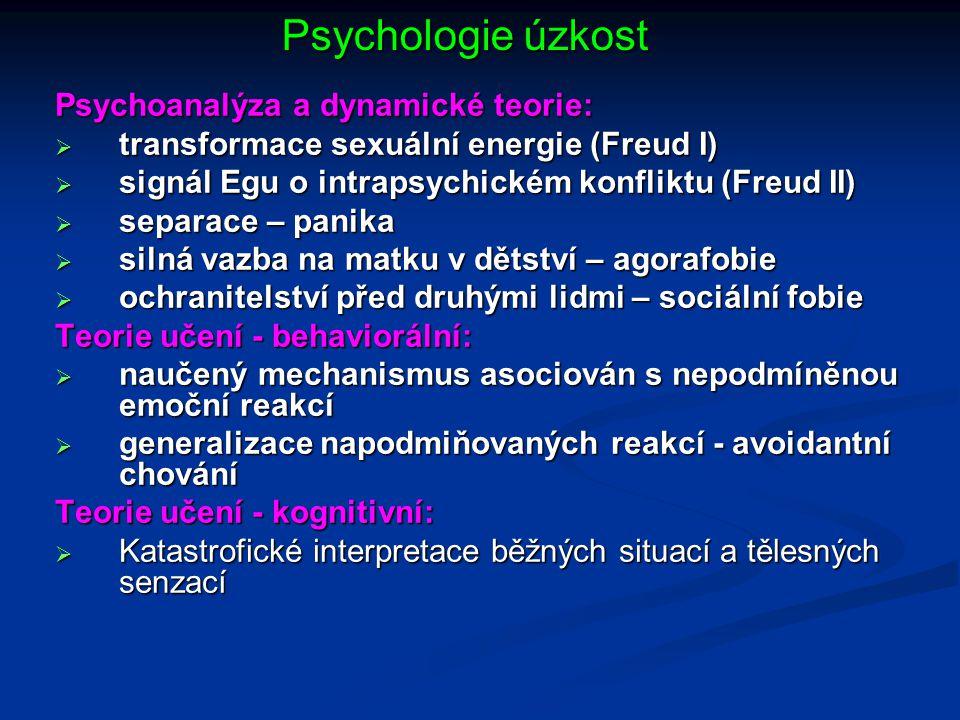 Psychologie úzkost Psychoanalýza a dynamické teorie: