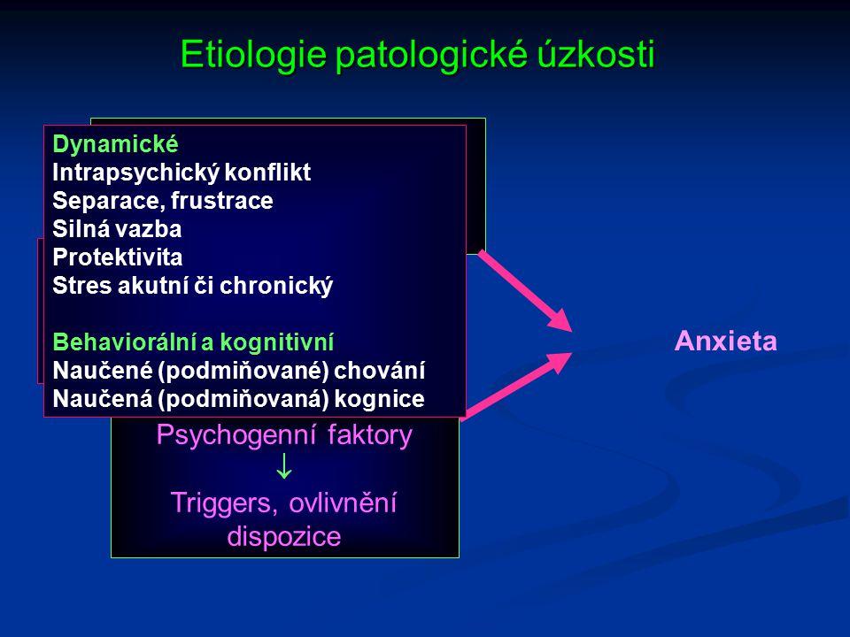 Etiologie patologické úzkosti