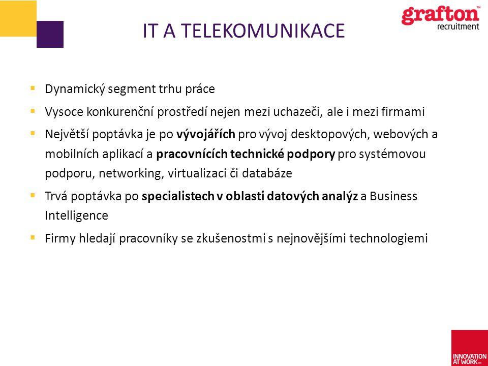 IT a telekomunikace Dynamický segment trhu práce