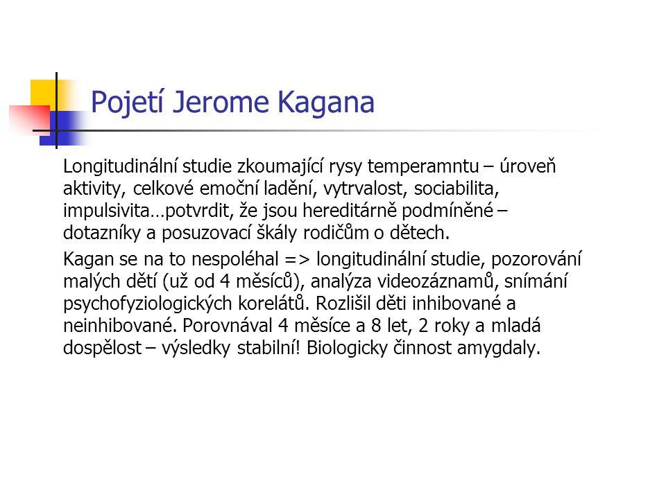 Pojetí Jerome Kagana